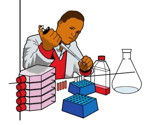 PrimeTimeEssay The best scientific lab report tips